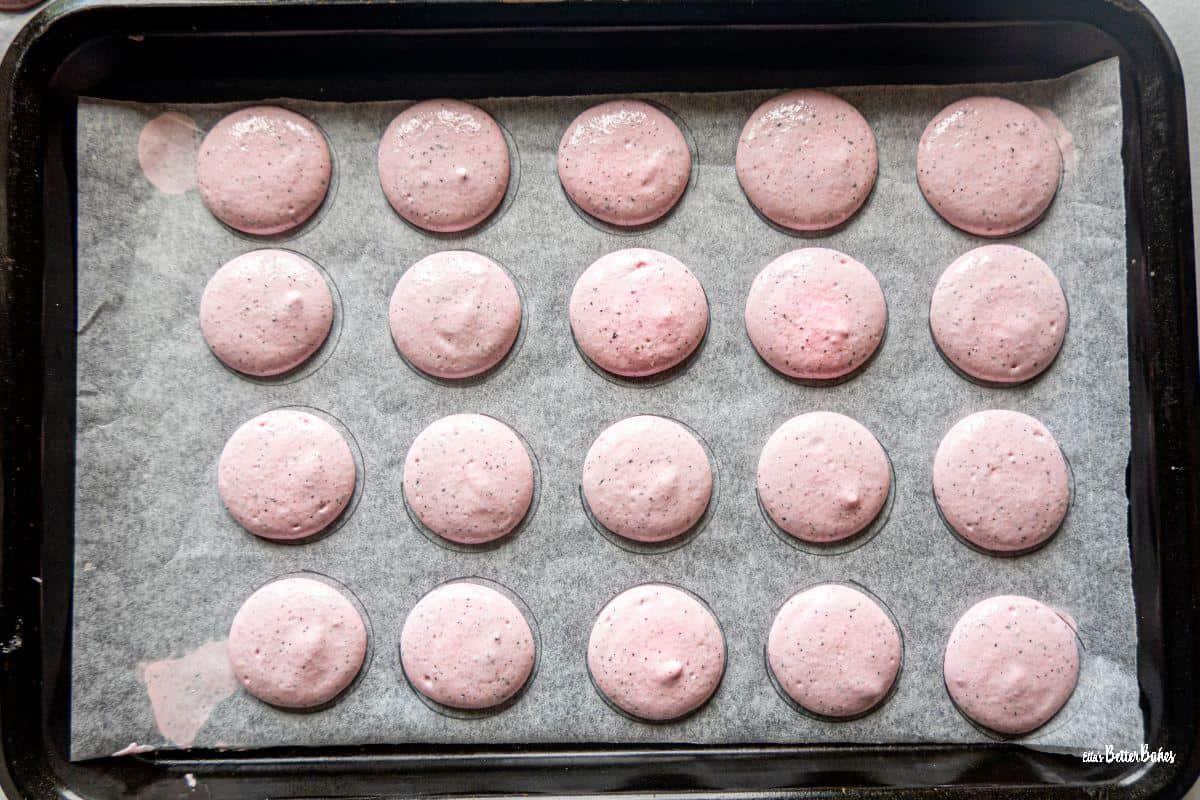 macarons in baking tray